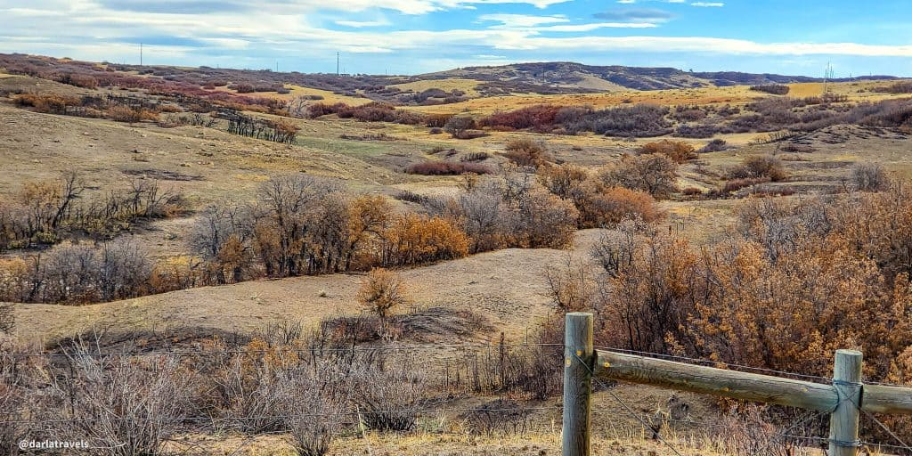 View from the East/West Regional Trail in Douglas County, Colorado