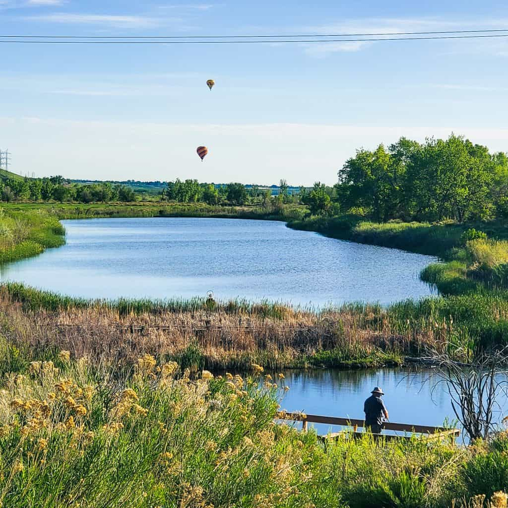 Ponds at the Denver Audubon Center in Chatfield State Park; man fishing; hot air balloons in the distance