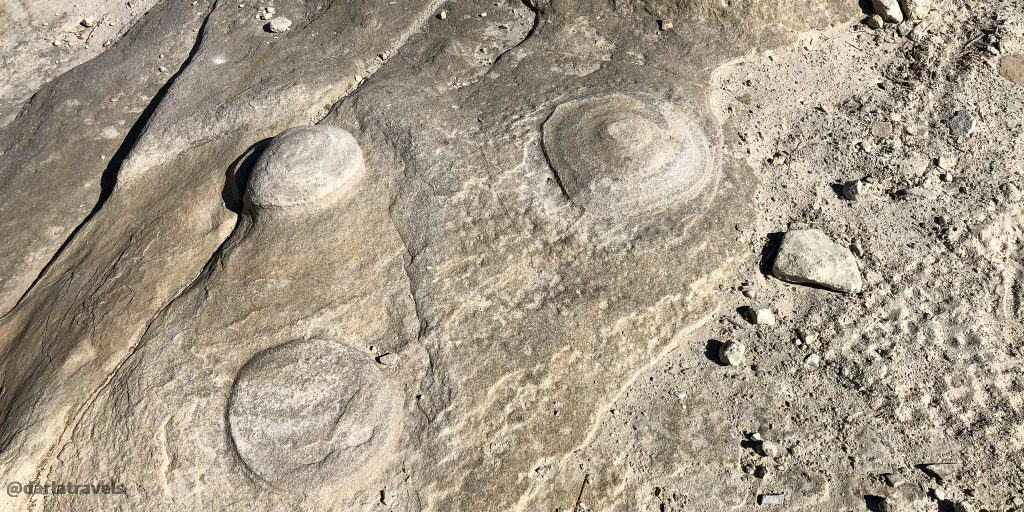 Concretions (hard masses embedded in a host rock) on the Rock Canyon Trail in Lake Pueblo State Park